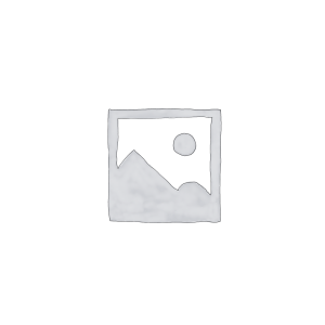 "All in One LG 22"", Windows 10 Home, Celeron, 4GB, 500GB de HD"